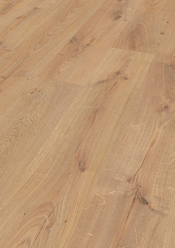 Baronial Oak